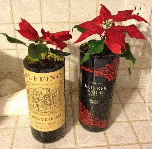 diy wine bottle plant potters - NV