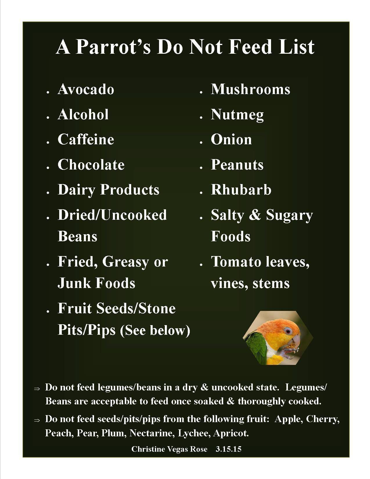 Quaker Parrot Food List