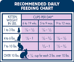 Cups Chicken Feed Per Day Google Search Cat Feeding Chart Cat