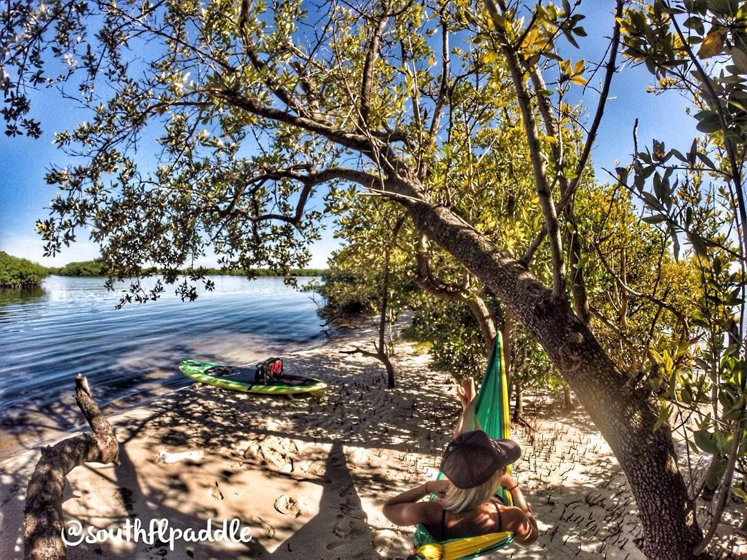 Taking it all in!!  by @southflpaddle