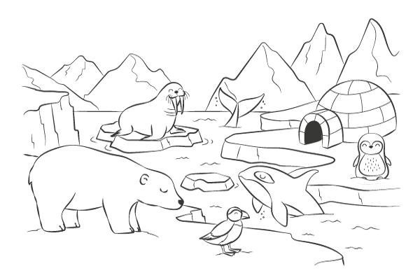 Dessine Moi Le Pole Nord Coloriage Animaux Animaux De L