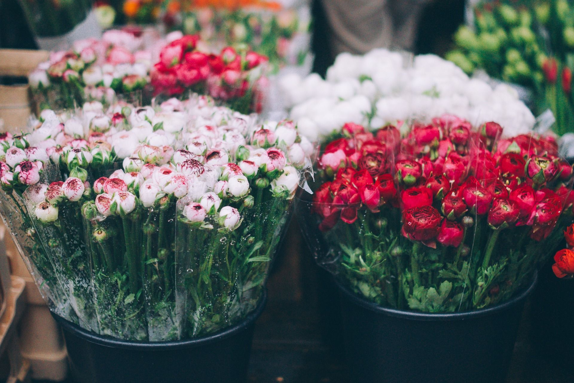 The Ultimate Guide To Food Markets In London Columbia Road Flower Market Flowers Flower Bar