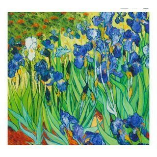 Irises Oil Painting by Vincent Van Gogh Free Shipping