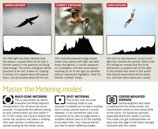Digital camera tips: choosing the right metering modes