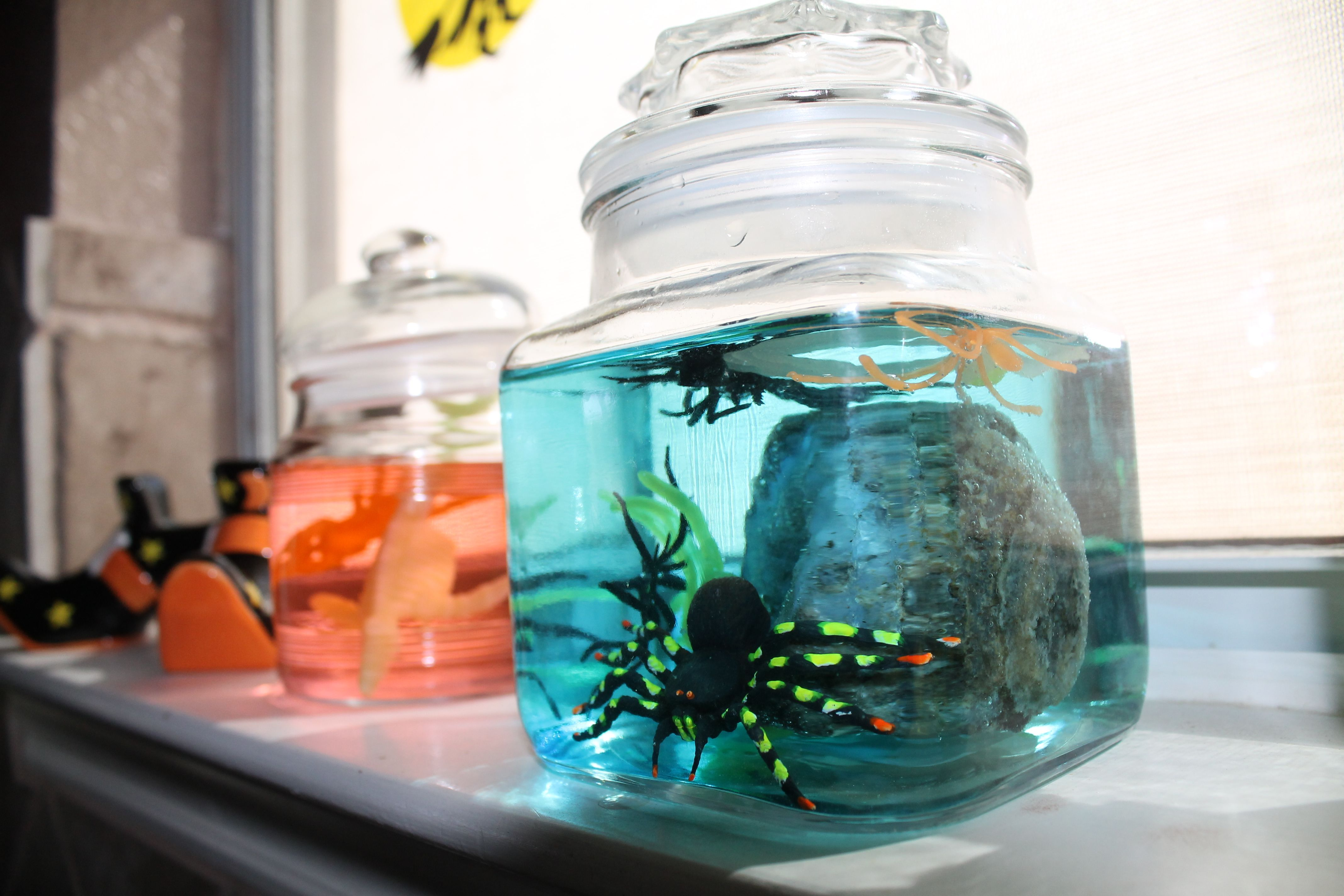 Put plastic bugsspiders in jar fill with colored water for a