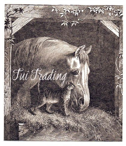 Victorian Card Image Digital Cat and Horse Image by TuiTrading