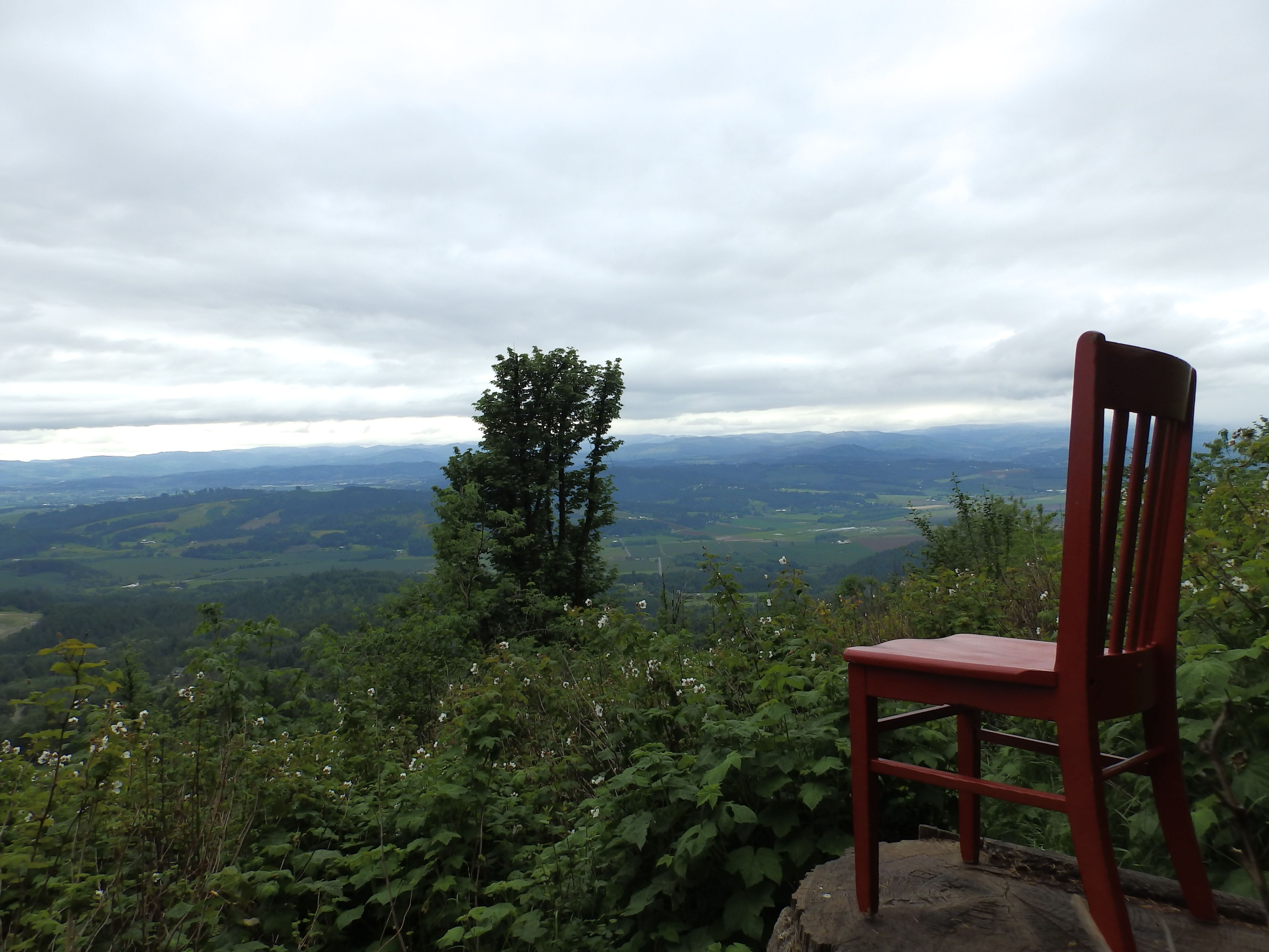 the red chair takes in the views from bald peak state park near
