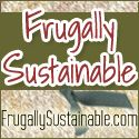 "Well, this blog ""inspires"" me to be more frugal and less toxic with cleaning products."
