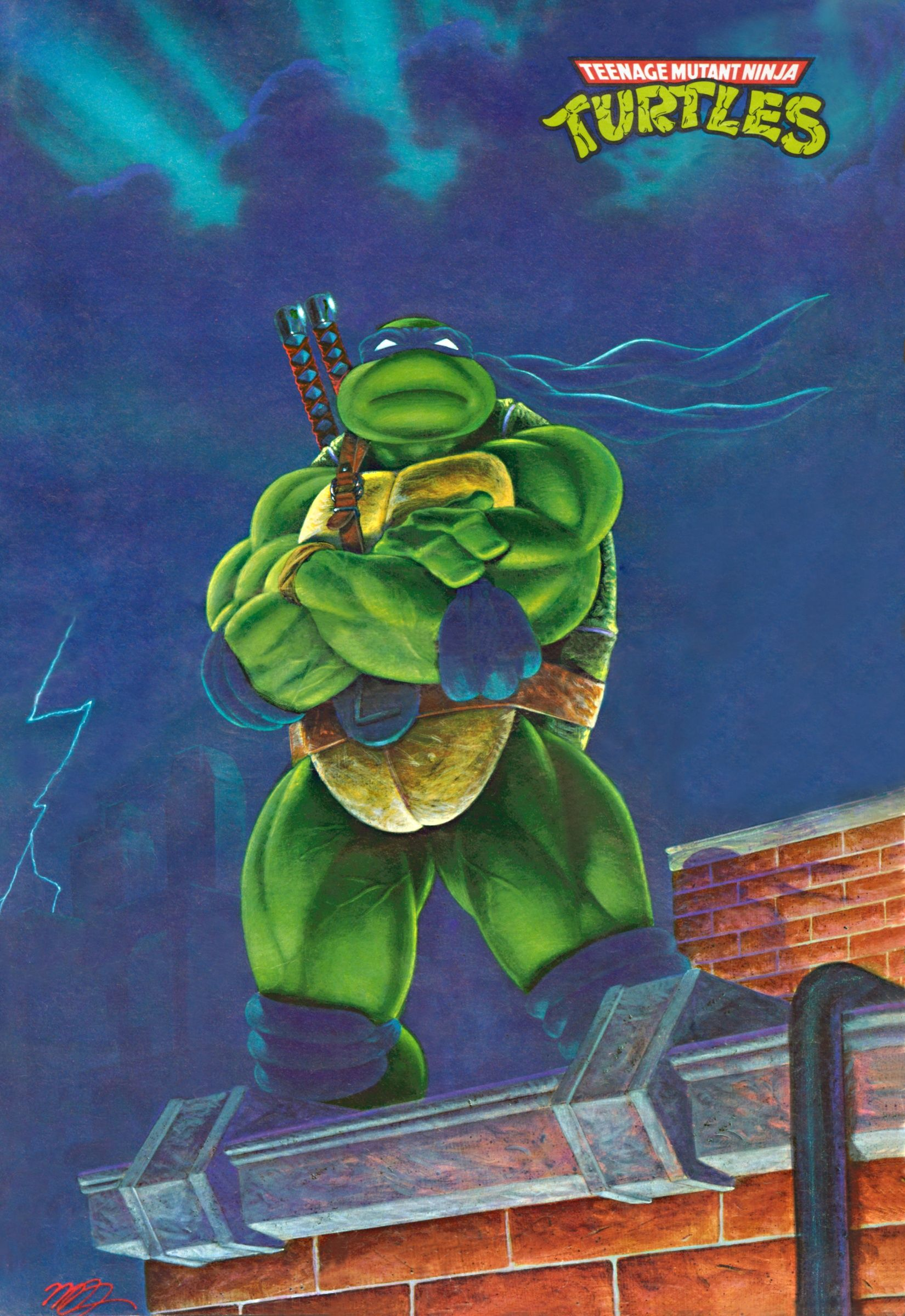 Teenage Mutant Ninja Turtles Leonardo Tmnt Artwork Teenage Mutant Ninja Turtles Teenage Ninja Turtles