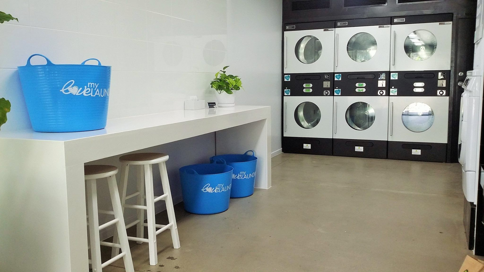 Pin By Maitham Rajab On Lavanderia Autoservicio Laundry Shop