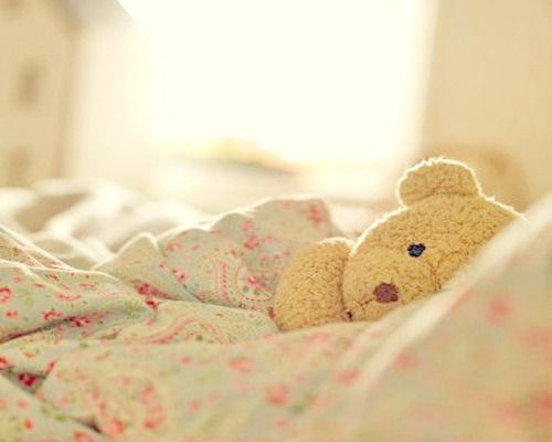 A Cuddly Bear Is A Perfect Gift Idea! Just Look At This Little Guy.