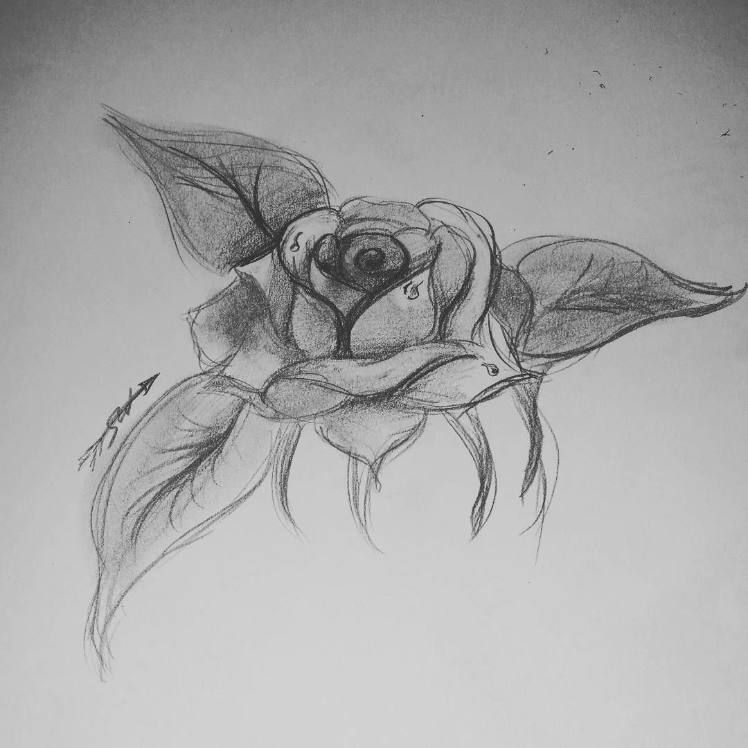 My first attempt at a rose flower rose sarahsketches art