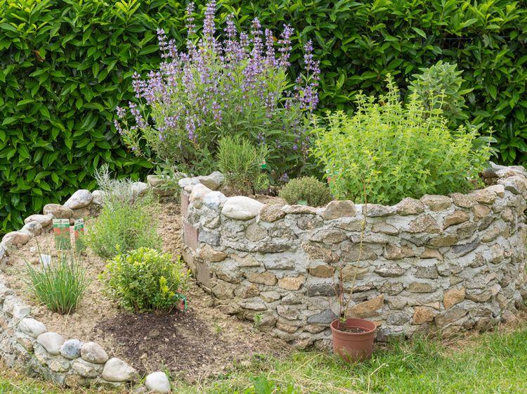Krauterspirale Bauanleitung Garten Pflanzen Pflanzen Garten