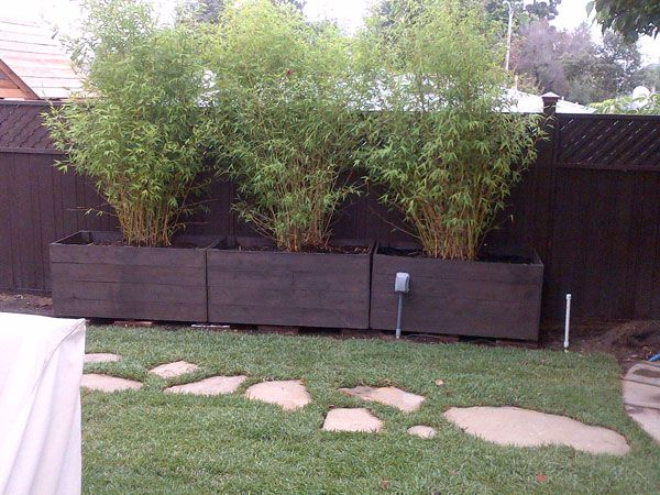 Raised bed planter bamboo privacy fence customer for Privacy planter ideas