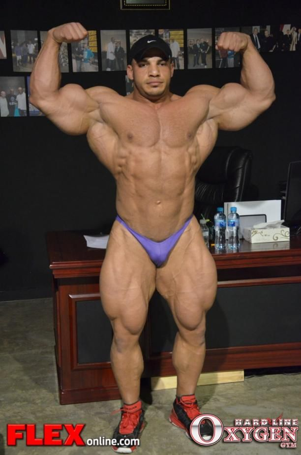 poses ifbb - Buscar con Google | Ginormous biceps | Pinterest ...