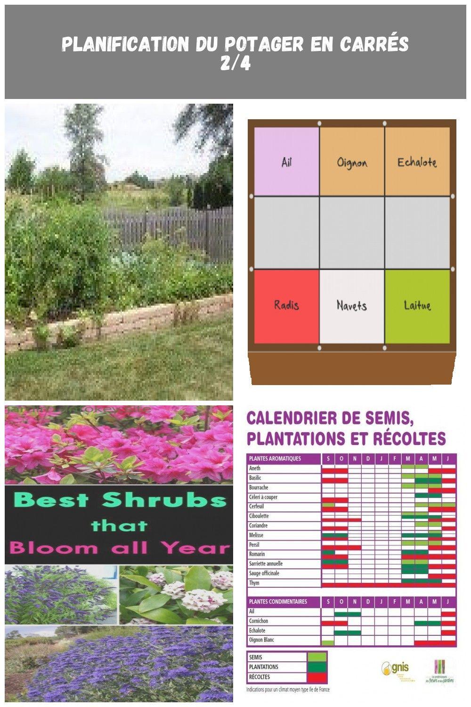 Oignon Blanc A Planter vegetable garden layout ideas: planning a vegetable garden