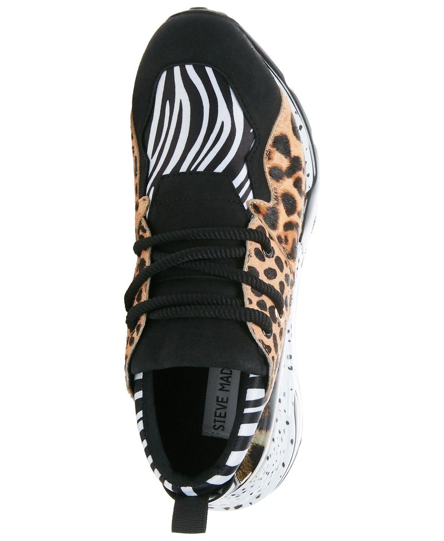 f79b2d3d03e Steve Madden Women Cliff Sneakers in 2019 | Leopard print handbags ...