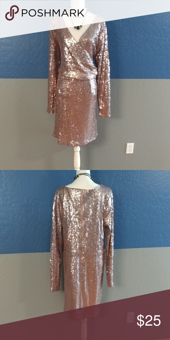 966f6a7a1c5 Alloy Apparel Party Dress Plus Size XXXL Beautiful Pink Sequins Dress Long  sleeves 44