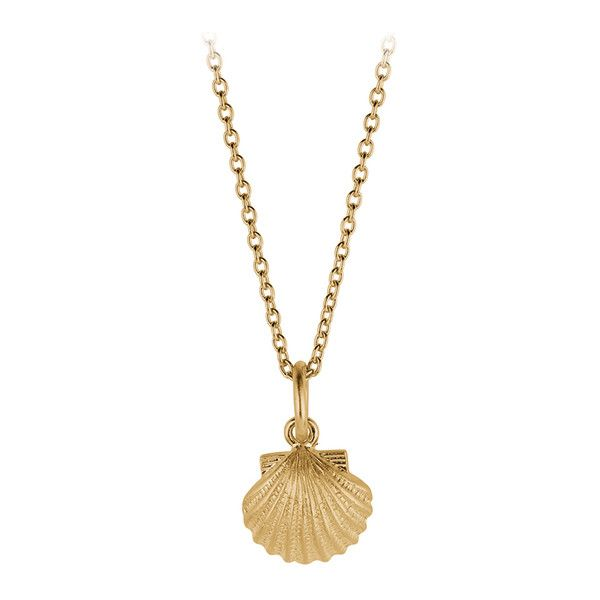 Seashell necklace 167900 cop liked on polyvore featuring seashell necklace 167900 cop liked on polyvore featuring jewelry necklaces sea aloadofball Gallery