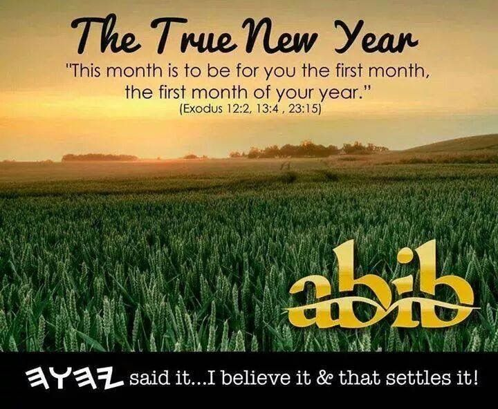 Happy New Year Hebrews Abib Is The 21st Of March Or The Spring Equinox Where Life Begins Anew From The Dead And Cold Season Whi Exodus 12 Bible Truth Exodus