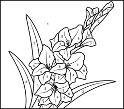 Gladiolus Printable Color by Number Page Flower