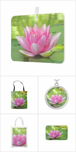 Water lily lotus flower this lovely floral collection features an water lily lotus flower this lovely floral collection features an exquisite pink water lily lotus flower mightylinksfo