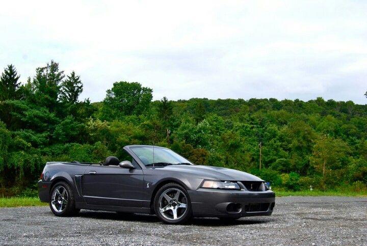 03 04 Dark Shadow Grey Mustang Cobra 2004 Ford Mustang Mustang Cobra Ford Mustang Cobra