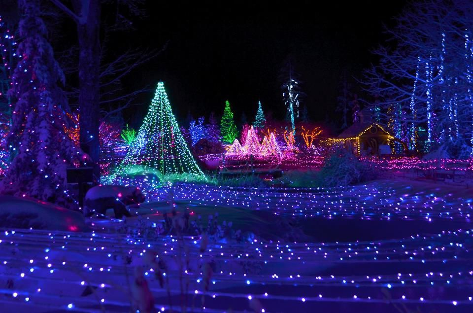 Here Are The Best Towns To See Stunning Christmas Lights Across The U S Christmas Scenery Best Christmas Light Displays Best Christmas Lights