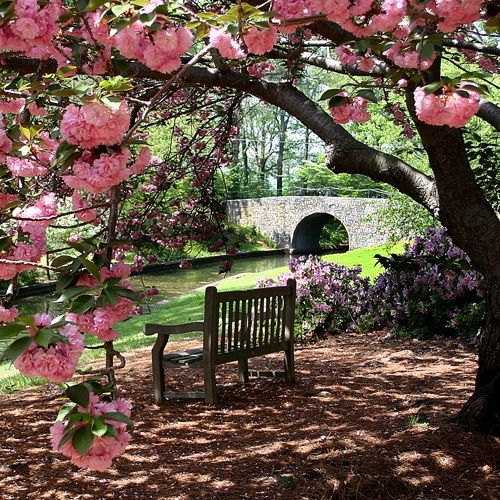 Beautiful My Next Tea Event In VA Will Be In The Local Botanical Garden. Great Idea