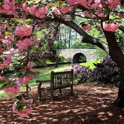 Attrayant Norfolk Botanical Gardens, Virginia   Site Of Wedding And Reception
