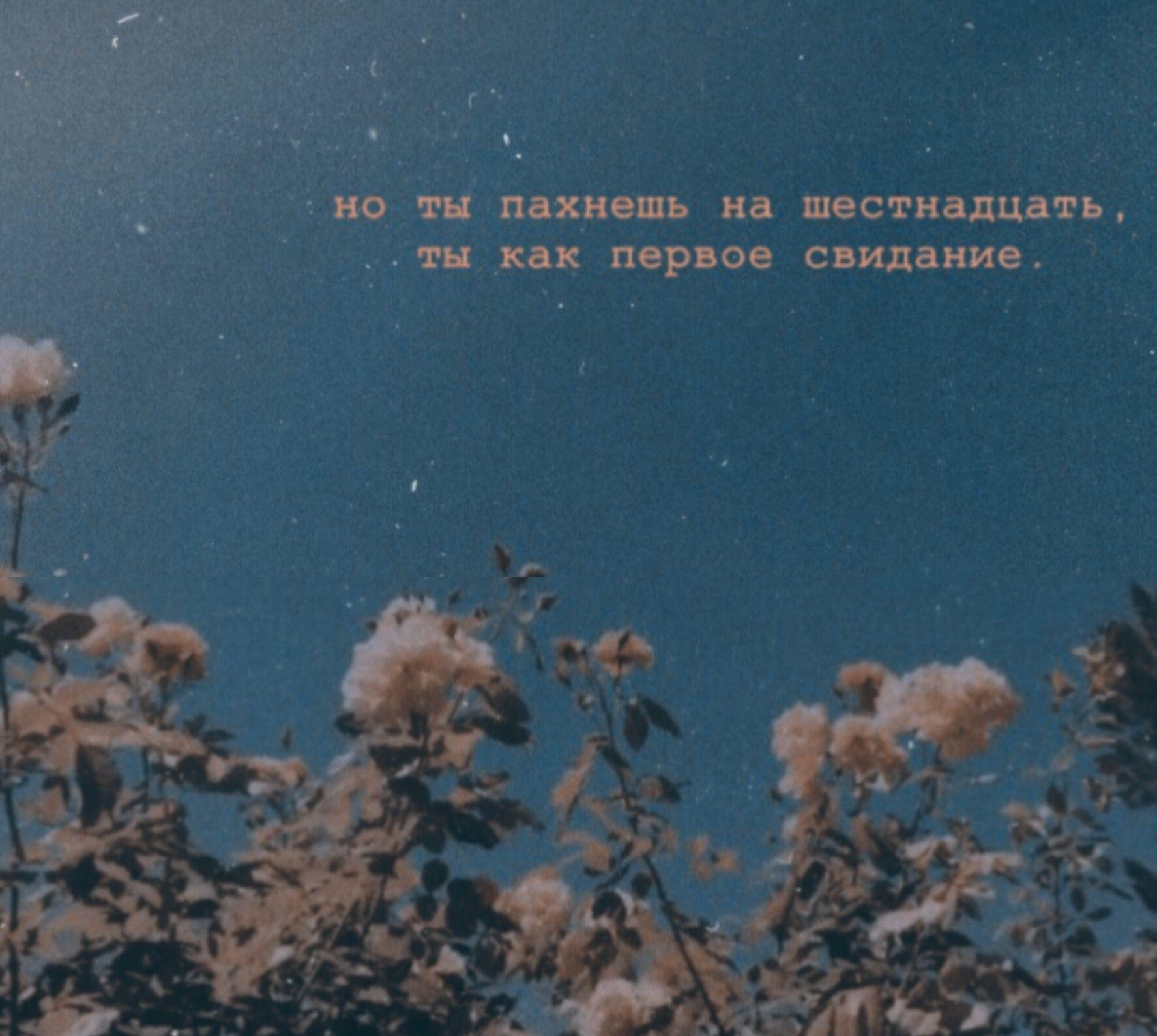 эстетика #цитаты #любовь #втихøмøмуте | Короткие цитаты, Подростковые цитаты, Великие цитаты