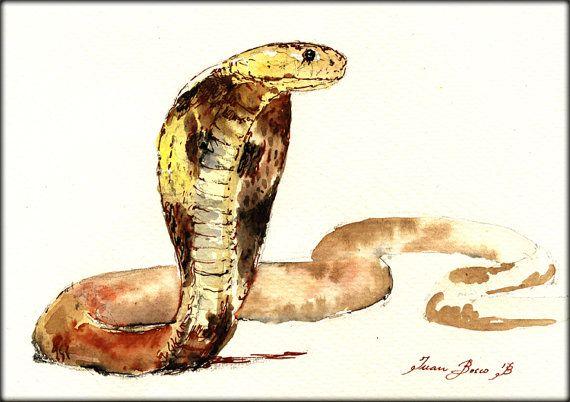 original watercolor painting Snake