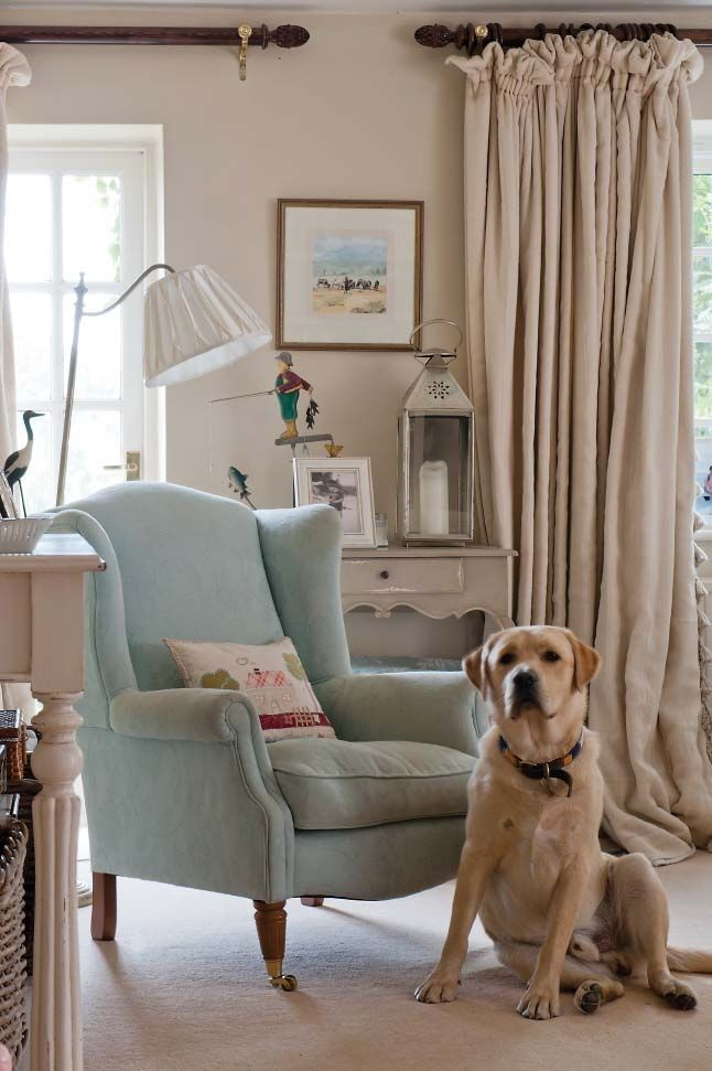 Love the dog and the chair!