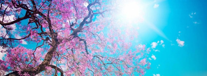 Pin By Zofia On Zdjecia W Tle Cover Photos Facebook Unique Facebook Cover Images Spring Cover Photos