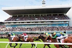 Flemington racecourse ~ Melbourne Spring Racing Carnival