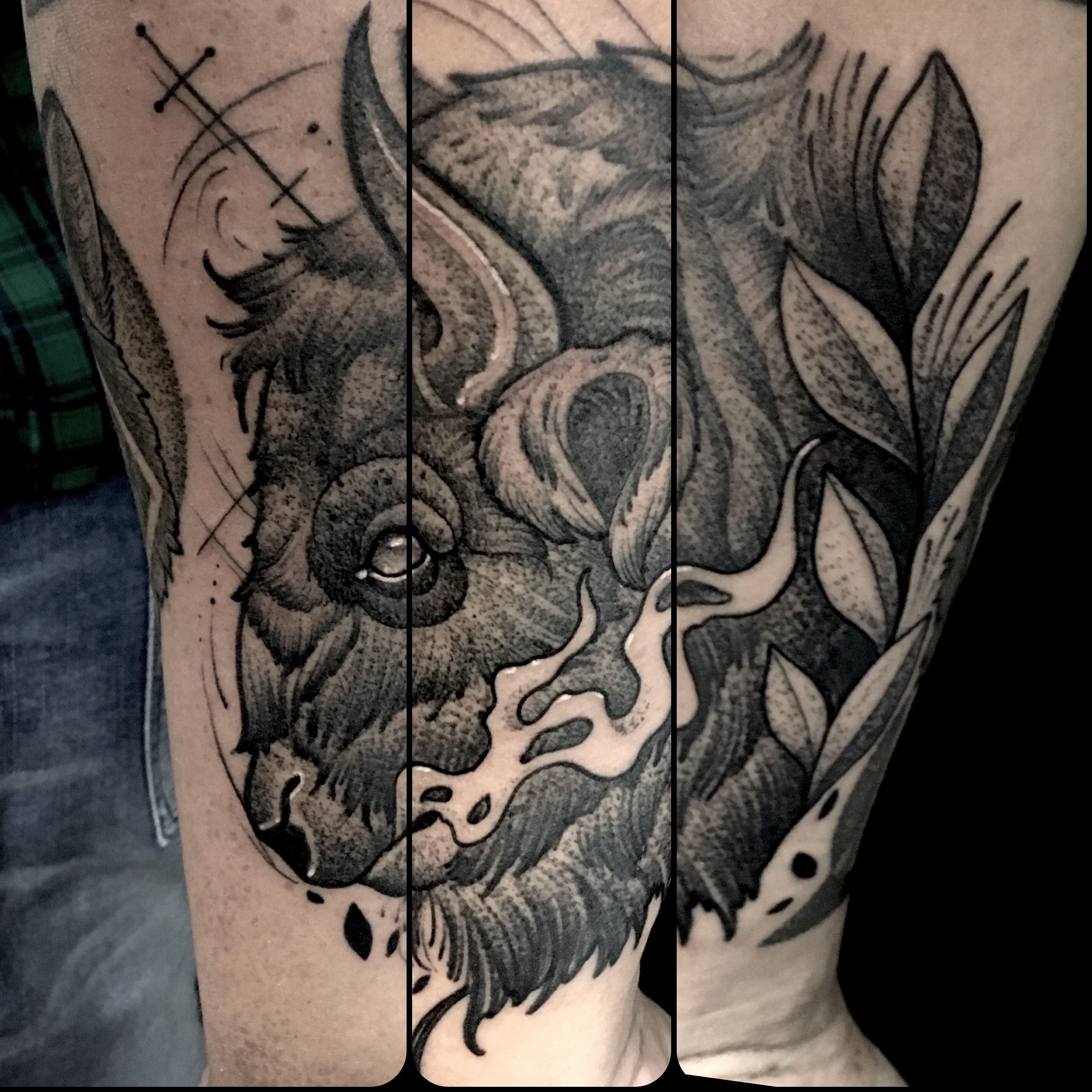 Buffalo neotraditional tattoo by juan david castro r for Traditional bison tattoo