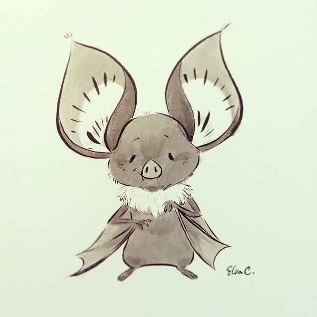 how to draw a fruit bat
