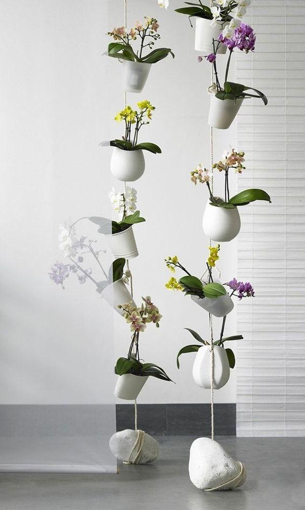 flores en macetas colgantes