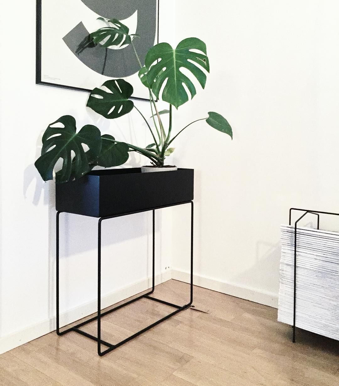 Captivating Ferm LIVING Plant Box Black: Http://www.fermliving.com/