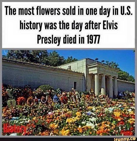 The 25+ best Elvis dea...
