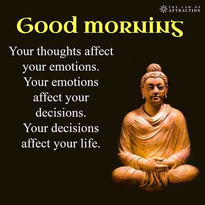 Pin By Orcilia On Daily Inspiration Inspirational Quotes Buddha Quote Life Quotes