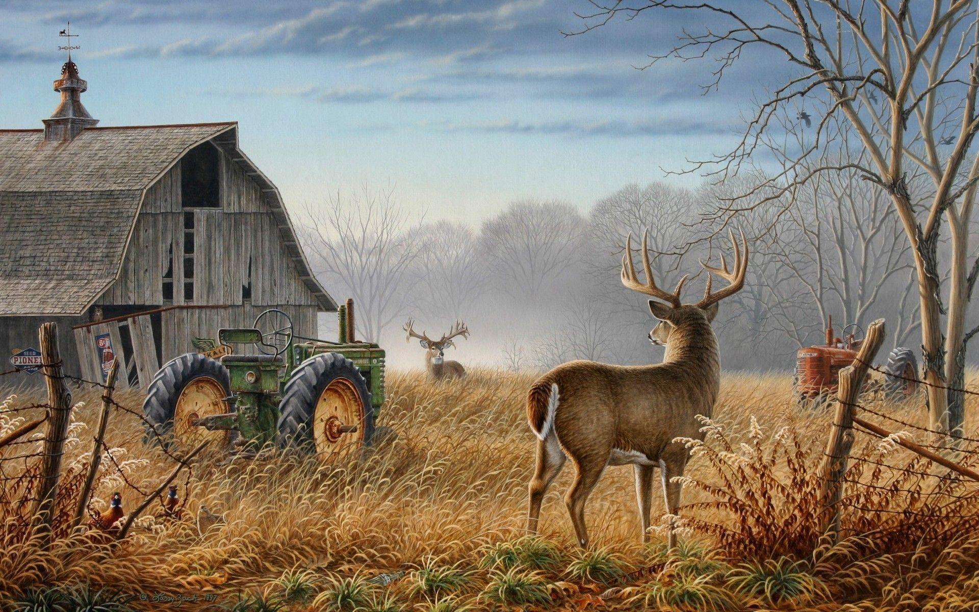 Deer Wallpaper For Android FbD · Wild Desktop HD