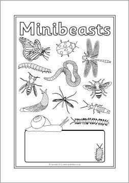 Minibeasts editable topic book covers (SB7963