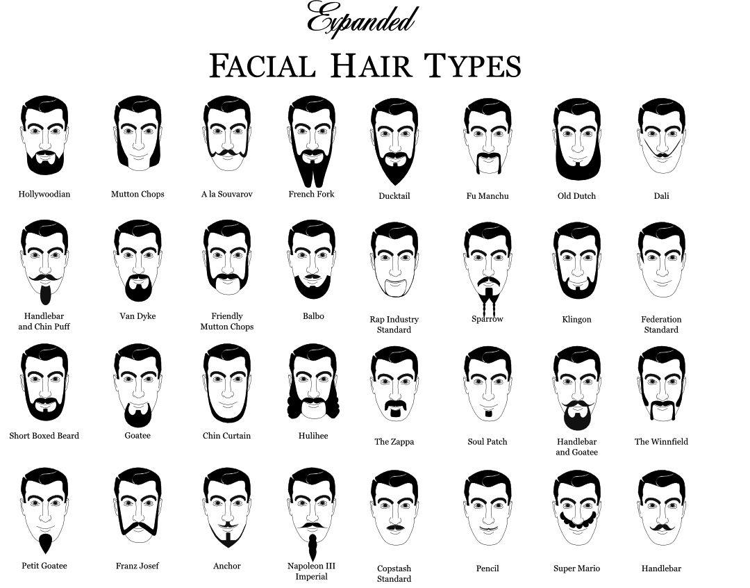 beard styles for black men chart: Hipster beard google search double baked donuts pinterest