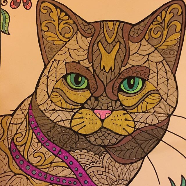 ColorIt Cats Kittens And Wildcats Adult Coloring Book Colorist Paula Lobe Adultcoloring