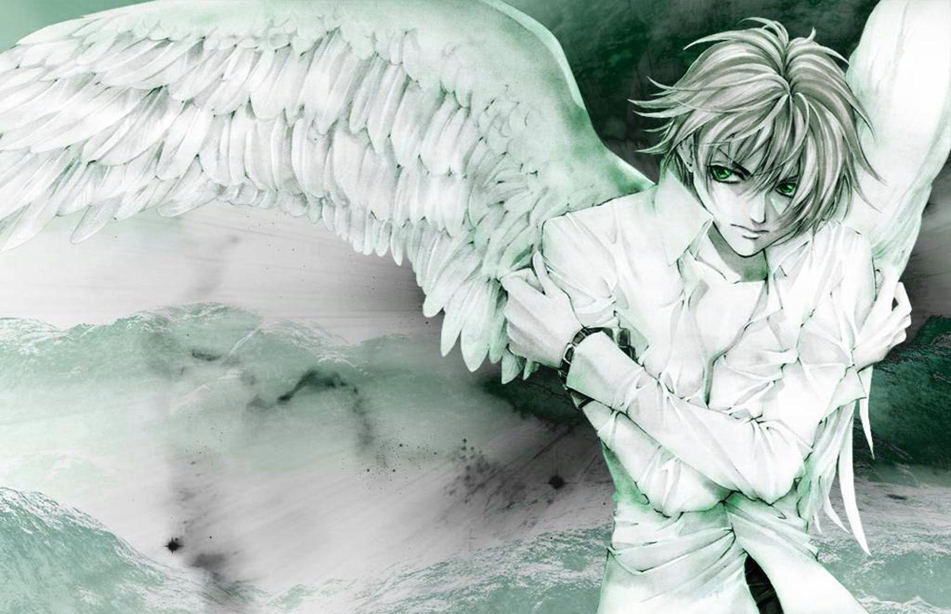 Angel Boy Desktop Wallpaper Wallberry Hd Wallpaper Anime Fallen Angel Angel Wallpaper Anime Angel