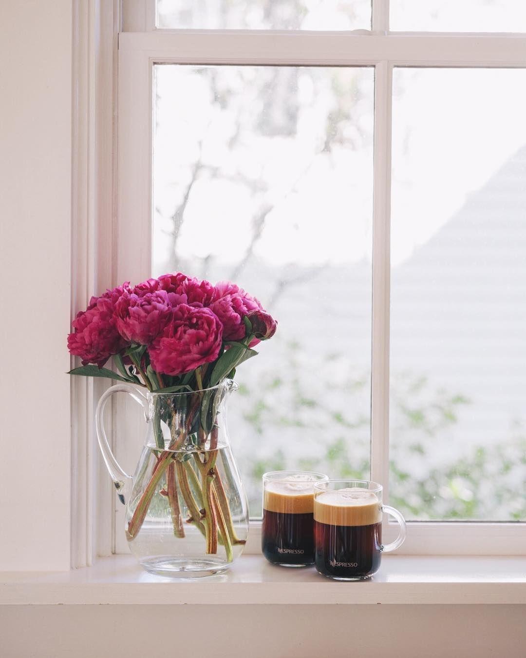 можно фото кофе весной у окна паразиты уменьшают