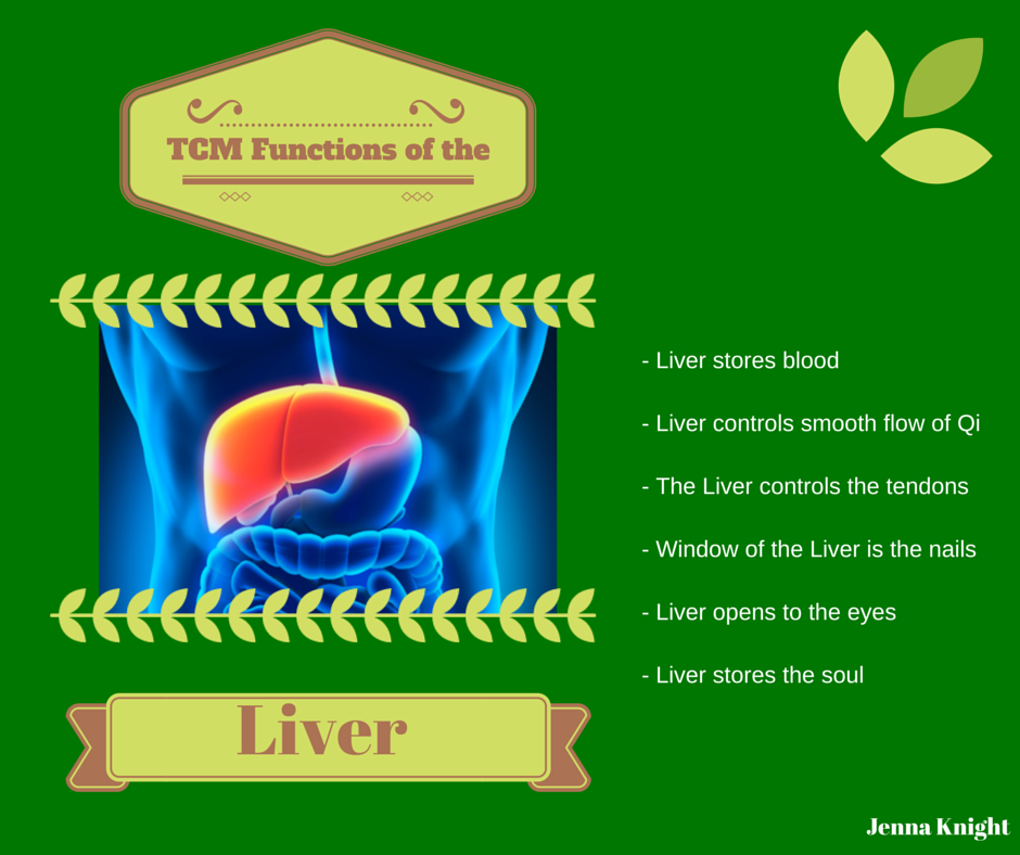Functions Of The Liver According To Tcm Tcm Career Pinterest