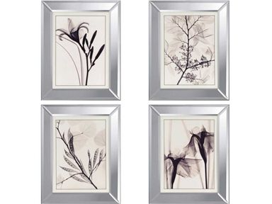 Shop for Paragon Florals Pk/4, 4337, and other Accessories at Westside Foundry in Atlanta, GA. Overall Size: 20 X 16, Molding: 649.  16w x 20 h (set of 4)