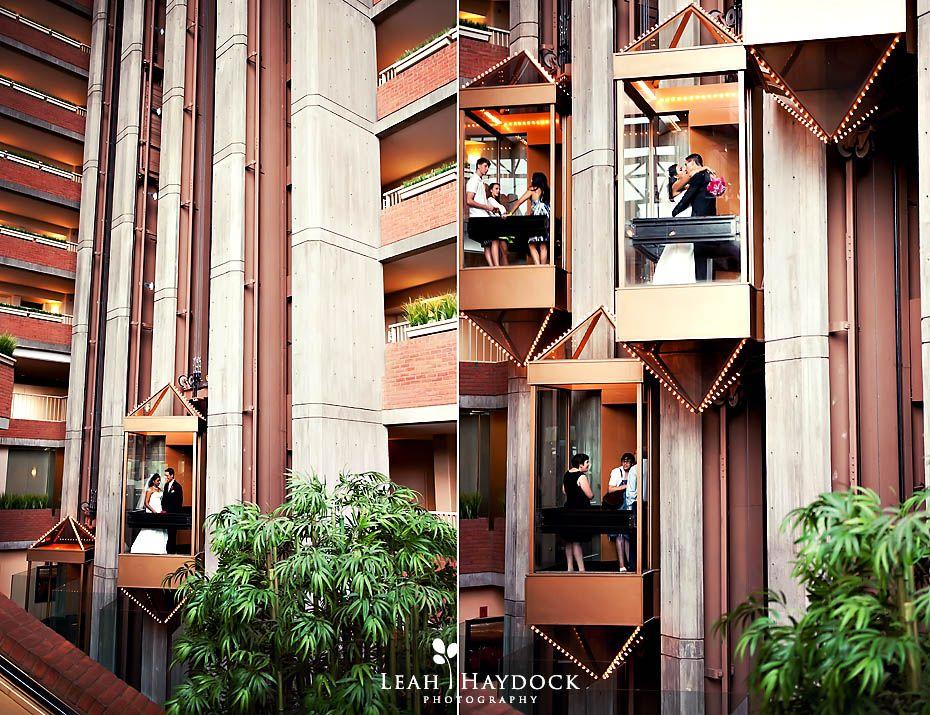 Leah Haydock Photography Hyatt Regency Hotel Cambridge Ma Boston Wedding Photographer Neeta Rich Part Ii
